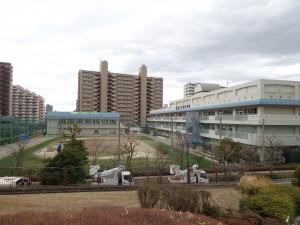 第三大島小学校①
