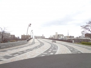 都立大島小松川公園(もみじ橋)