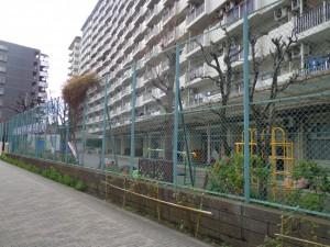 第三大島幼稚園②