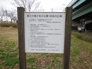 都立大島小松川公園(自由の広場 中央地区)①