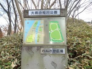 大島・小松川公園(わんさか広場)③