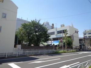 江東YMCA幼稚園②