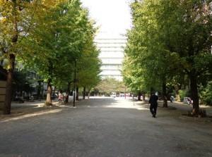 堀留児童公園⑤
