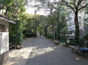 浜町緑道公園⑥
