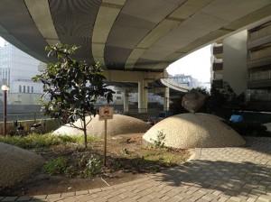 箱崎川第一公園④