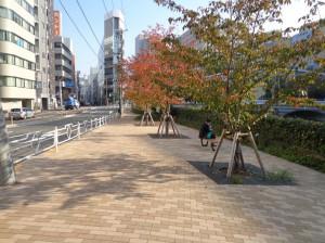 箱崎川第一公園③