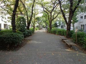 浜町緑道公園⑦