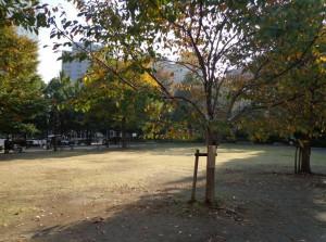 箱崎公園⑤