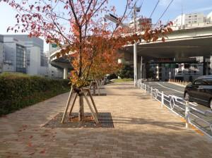 箱崎川第一公園②