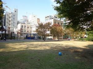 箱崎公園⑧