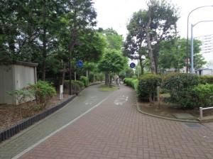 南砂緑道公園③