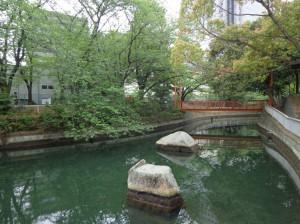 仙台堀川公園⑧