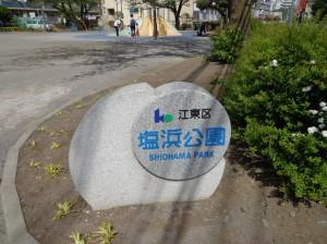 塩浜公園①