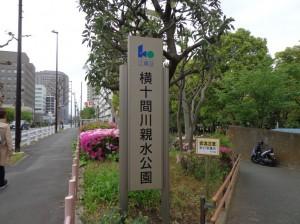 横十間川親水公園①
