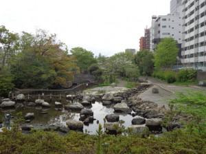 仙台堀川公園④