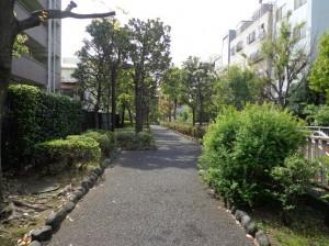 洲崎川緑道①