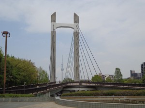木場公園大橋①