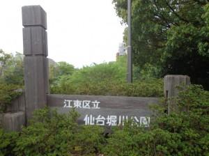 仙台堀川公園①