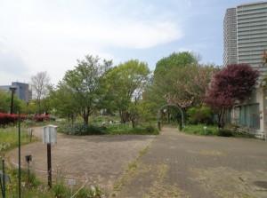 木場公園 都市緑化植物園①