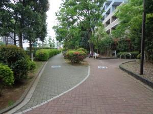 南砂緑道公園④