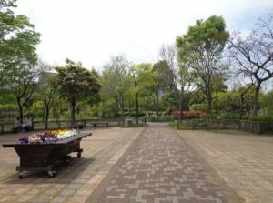 木場公園 都市緑化植物園②