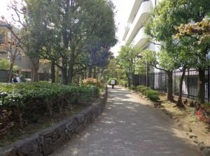 洲崎川緑道②