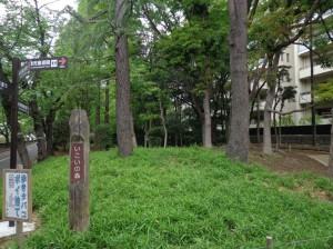 仙台堀川公園 いこいの森